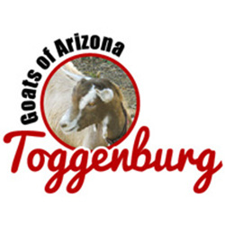 Toggenburg Goats of Arizona logo (image)